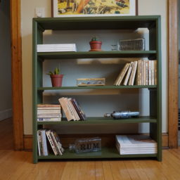 Smoker's Rescue Bookcase